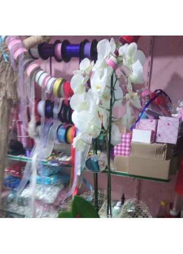 Orkide-10